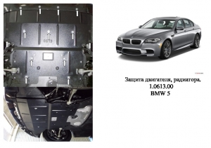 Защита двигателя BMW 5 F10 - фото №5